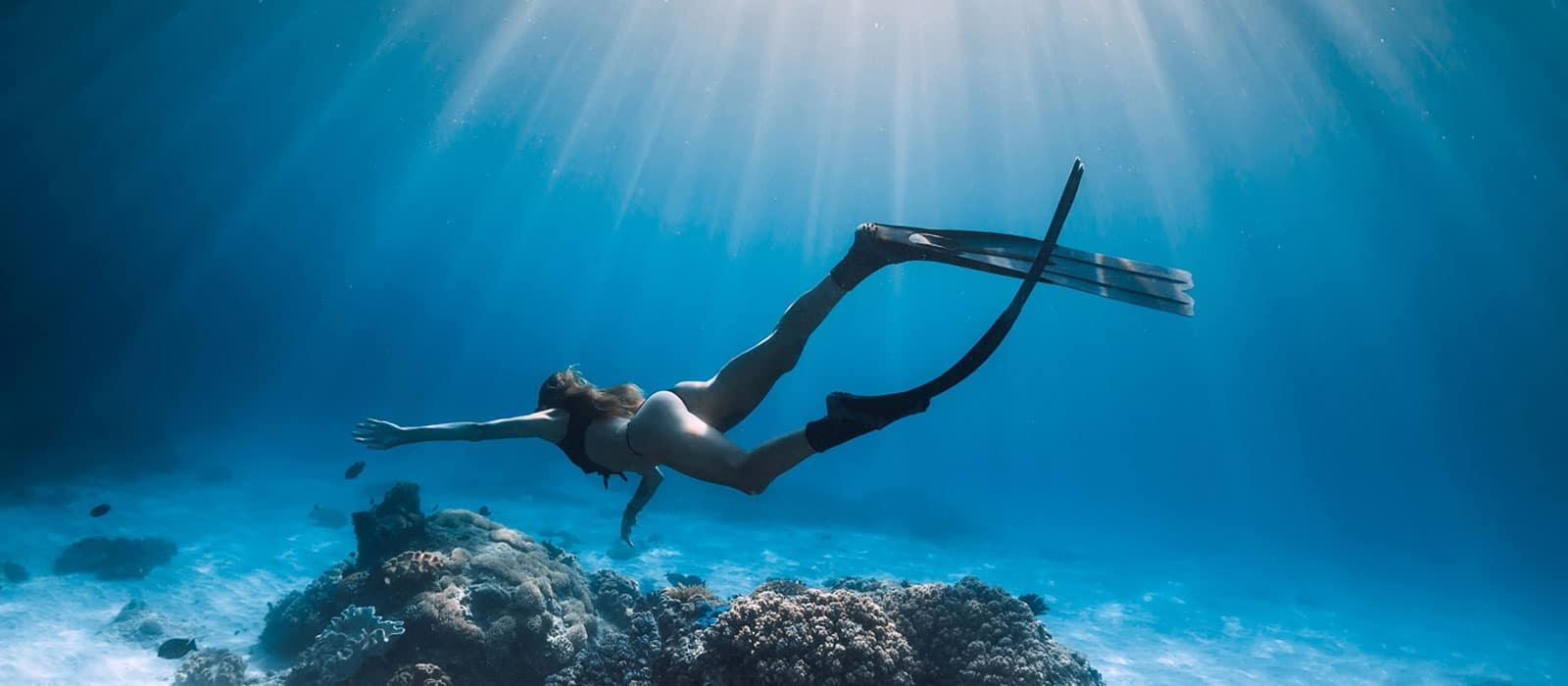 Schwimmen, Tauchen, Schnorcheln und Apnoetauchen haben mehr Gemeinsamkeiten als man denkt